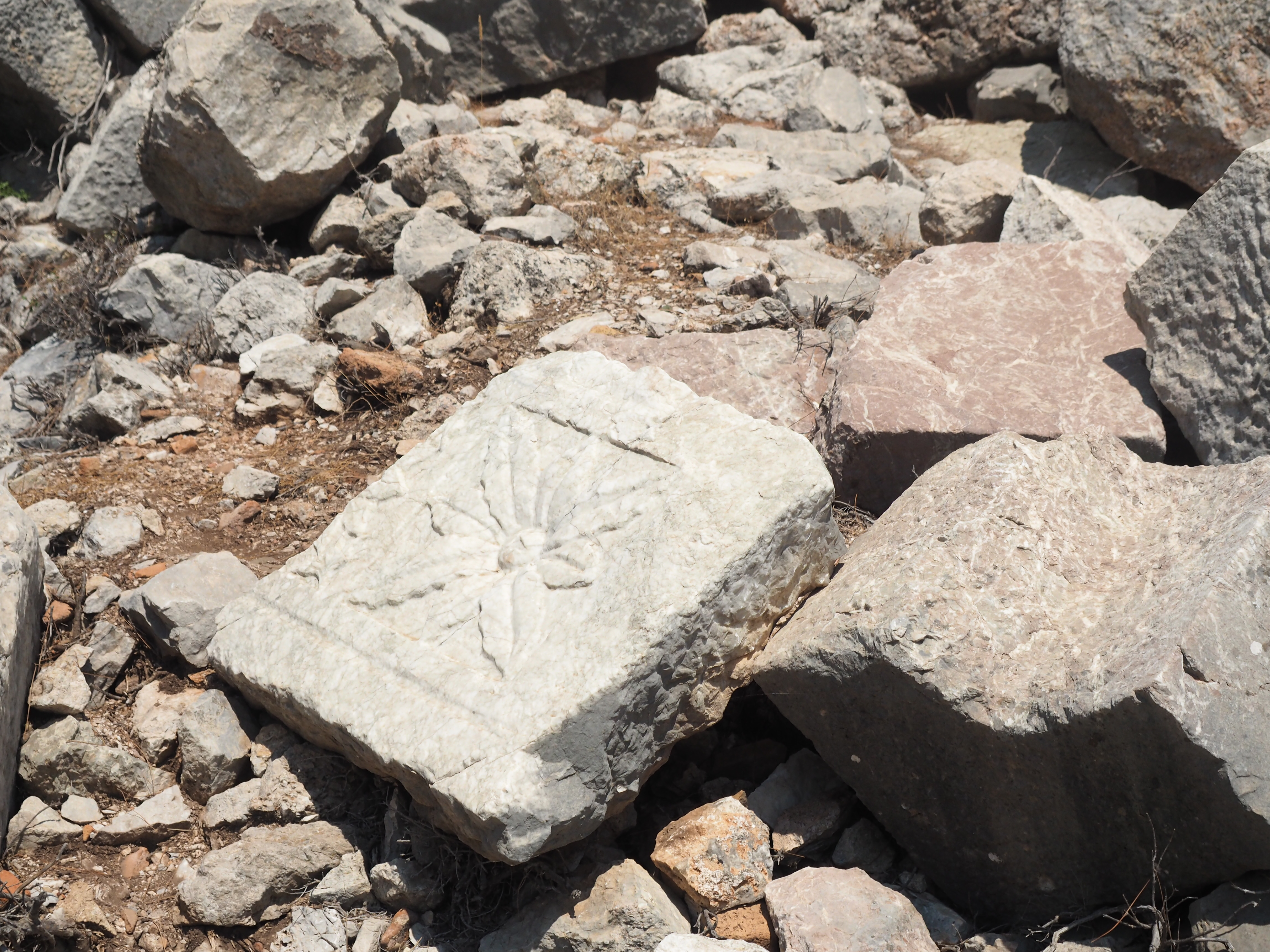 Kadyanda Antik Kenti'nden... ortalıktaki sütunlardan... Fotoğraf: SİNAN HAMAMSARILAR